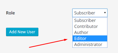 editor account in WordPress