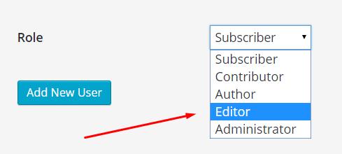 editor account in WordPress