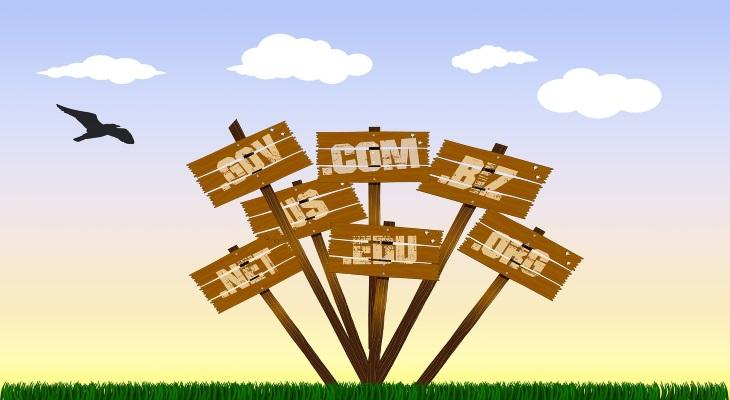 how much is a domain name