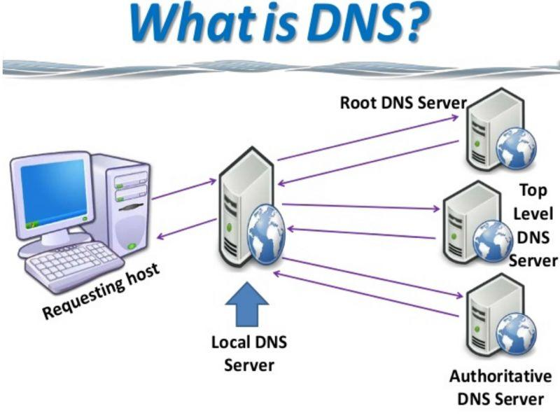 dns hosting reviews