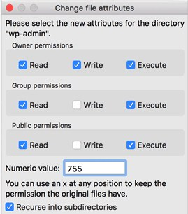 WordPress error fix change file attributes