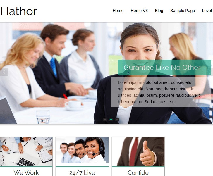 HathorWordPress Theme