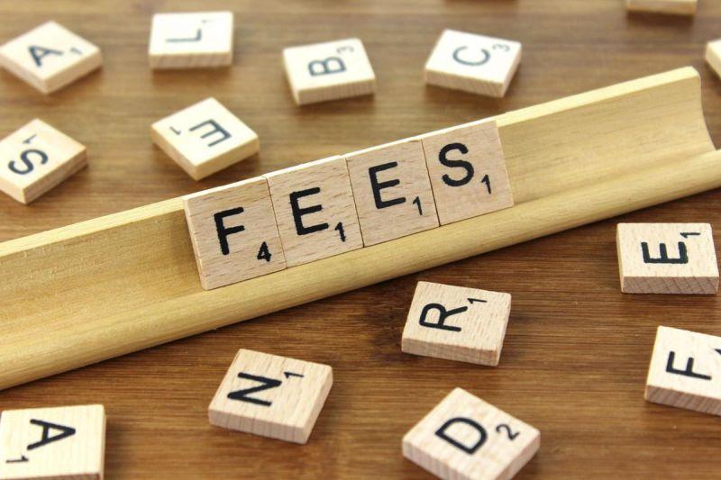 domain fees