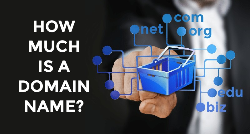 How much is a domain name per year