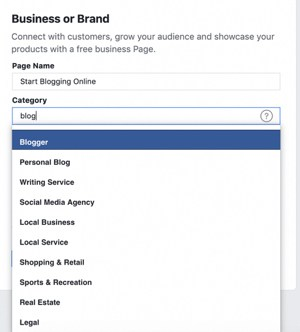 Choose Facebook page business or brand type