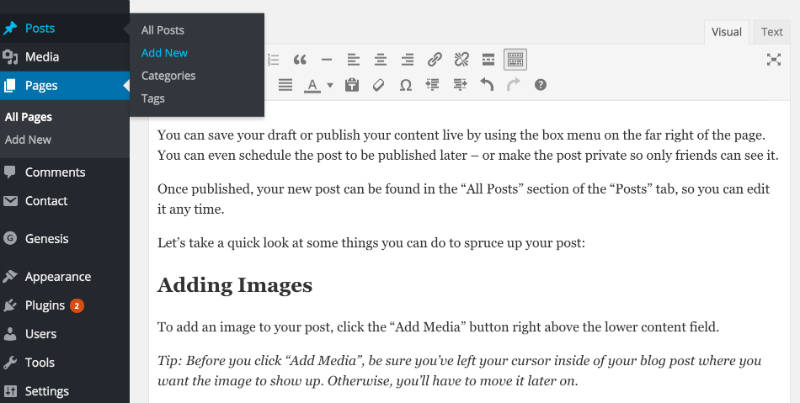 How To Add/Write Blog Posts and Pages 1